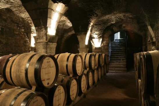 Cellars of the Collégiale Church (2)
