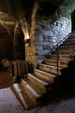 Cellars of the Collégiale Church (3)